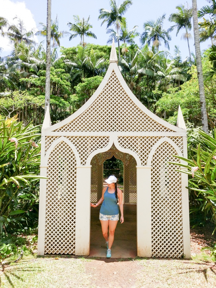 What to do in Kauai, by Travel Blogger What The Fab