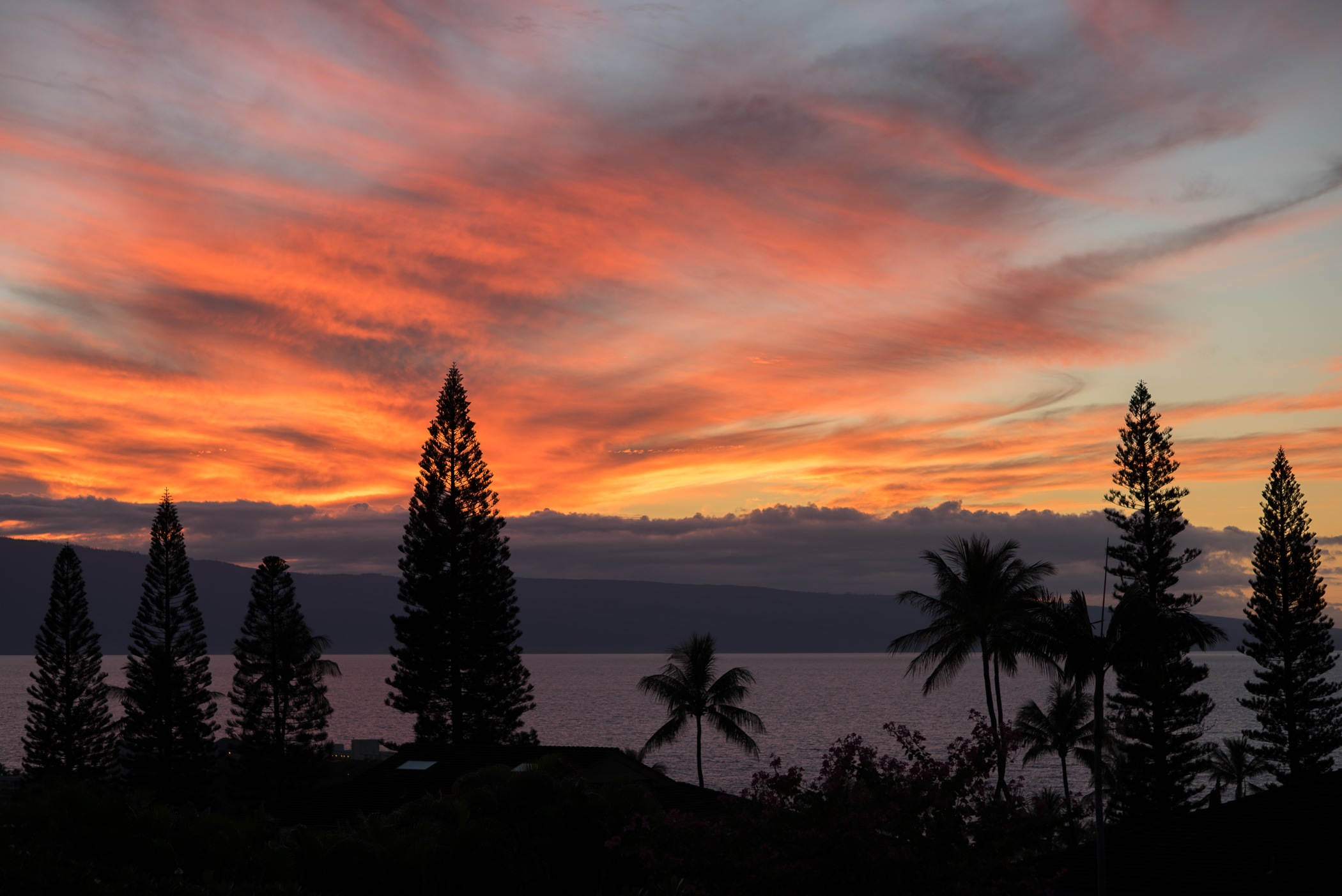 The Ultimate Maui Travel Guide featured by popular San Francisco travel blogger, What The Fab