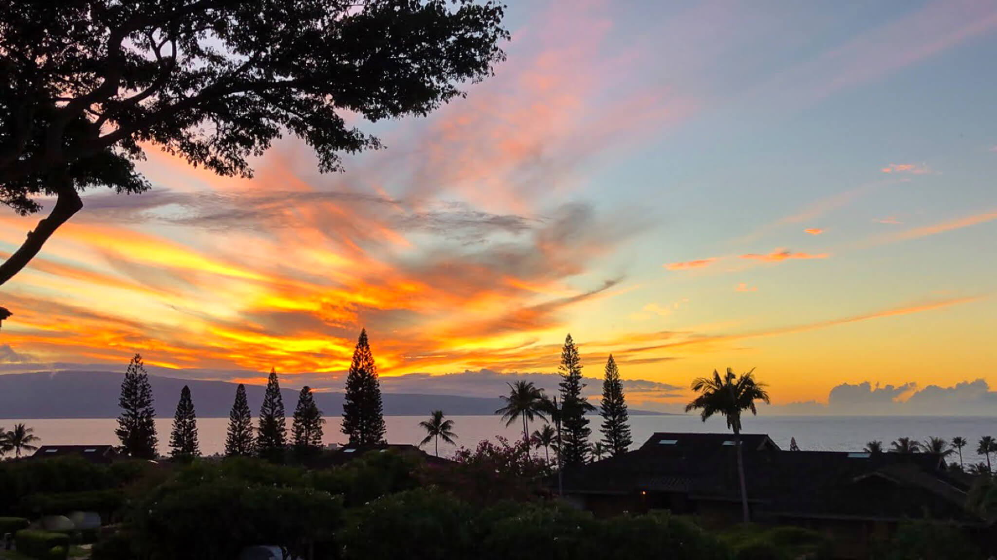 What To Do in Maui: The Ultimate Maui Travel Guide