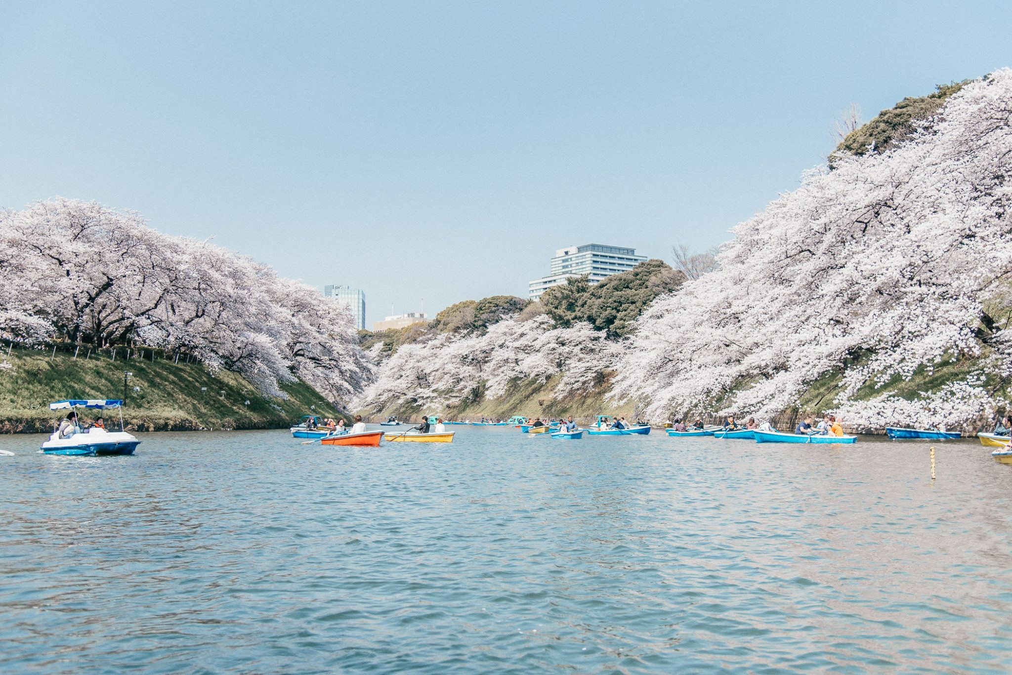 The Best Things to do in Tokyo featured by popular San Francisco travel blogger, What The Fab
