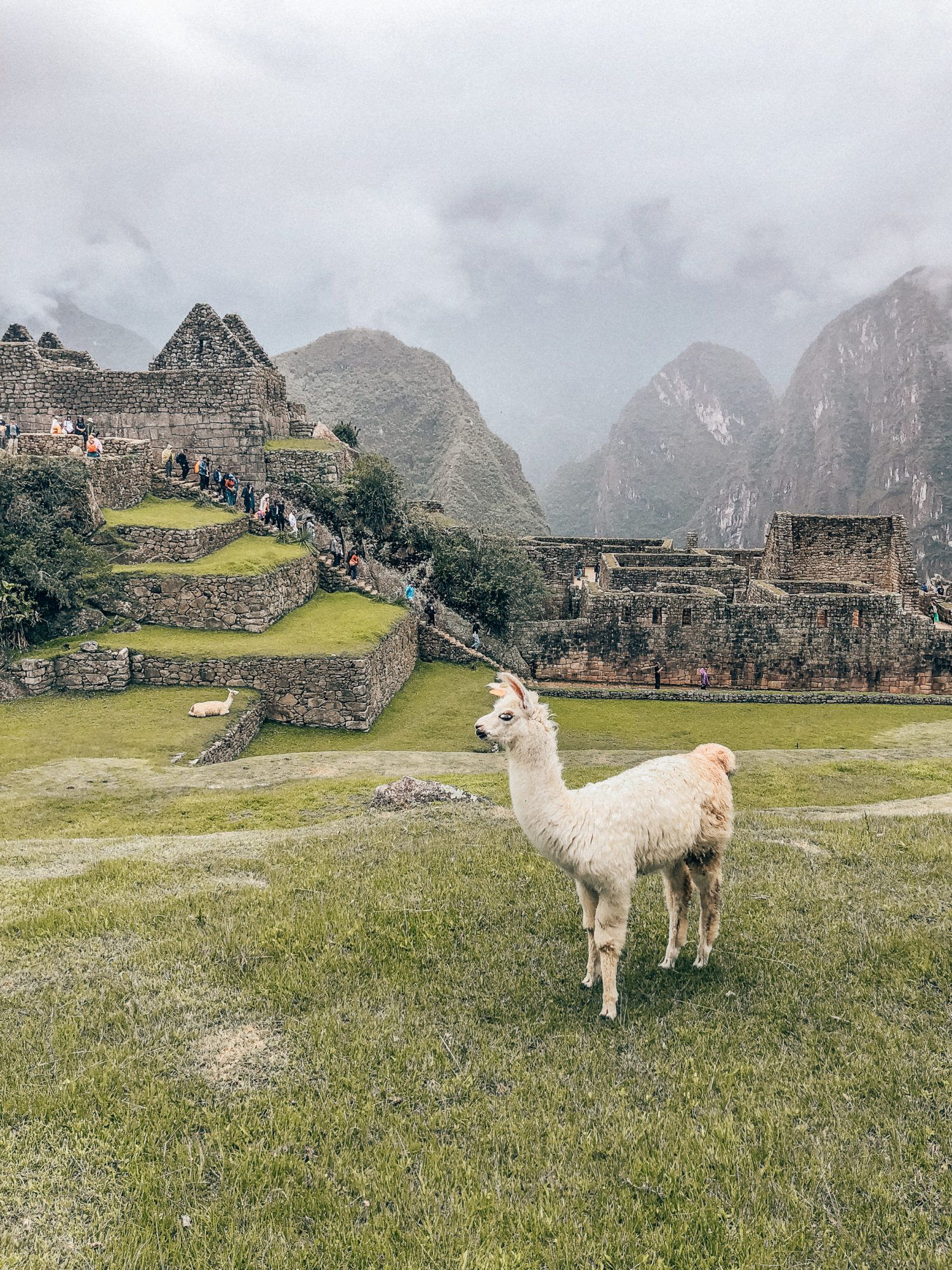 The Ultimate Machu Picchu Travel Guide featured by top San Francisco travel blog, What the Fab