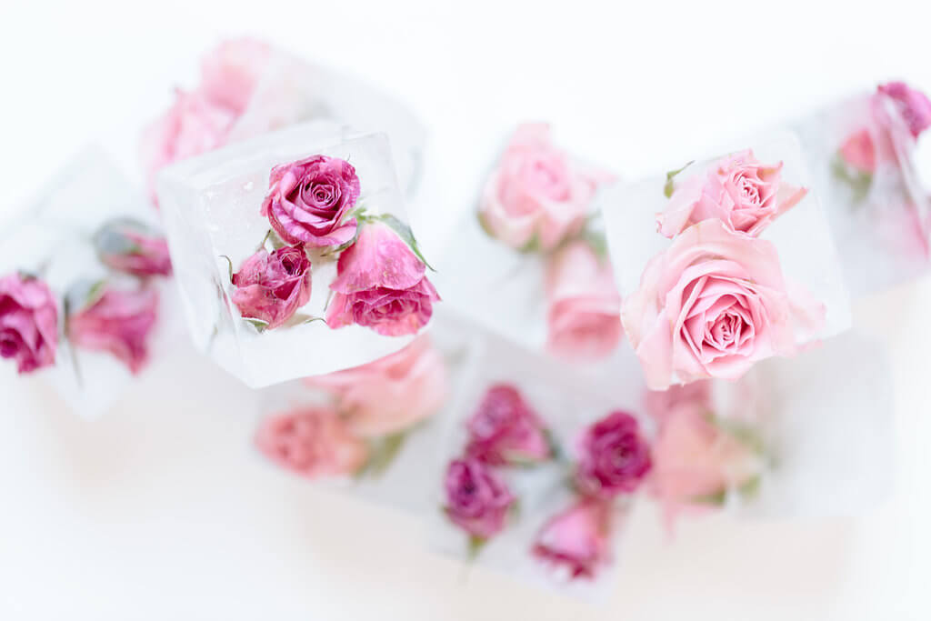 flower ice cubs