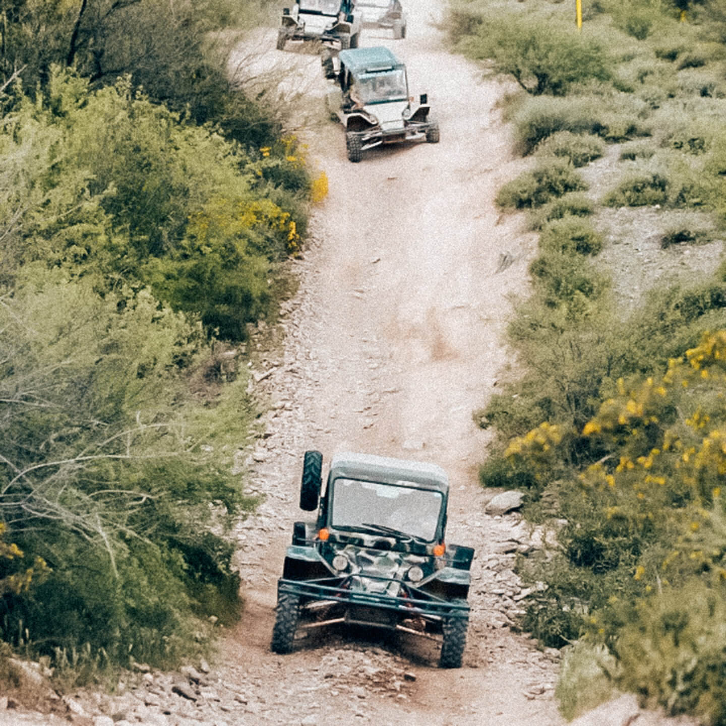 Outdoor Scottsdale Activities, by Travel Blogger What The Fab
