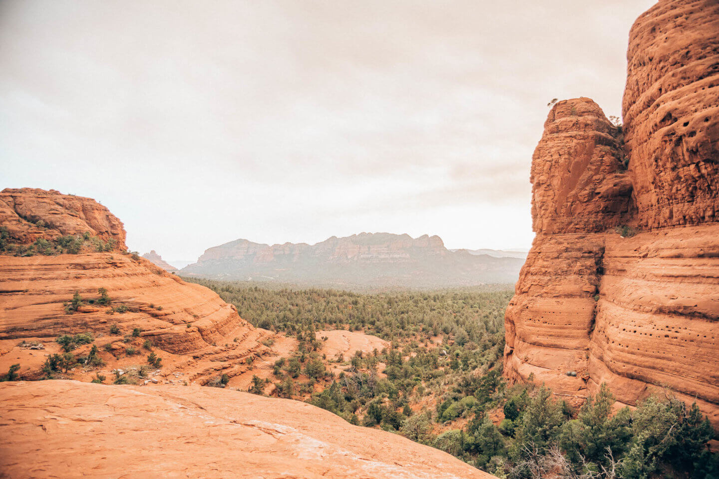 Pink Jeep Tour Sedona review by travel blogger What The Fab