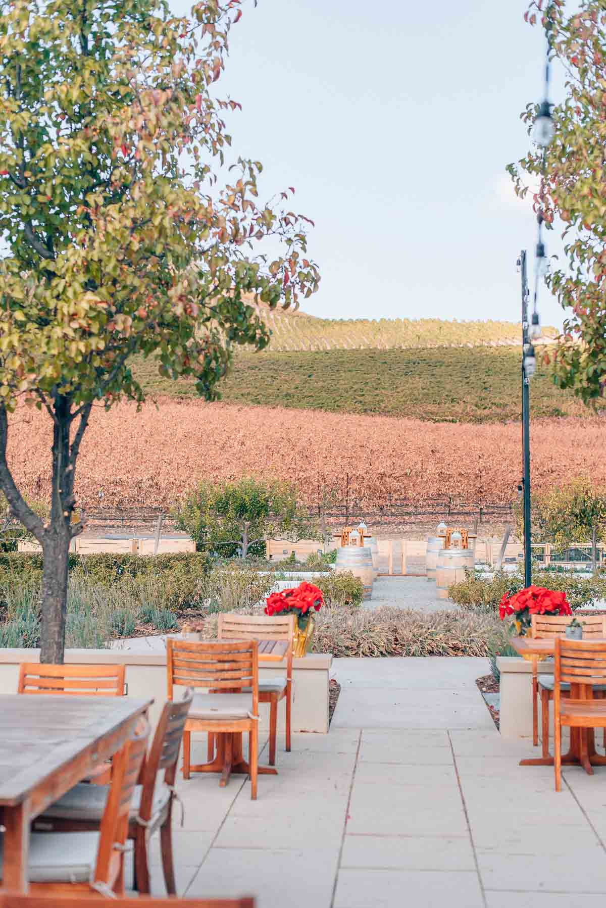 Visiting Justin Winery in Paso Robles, California