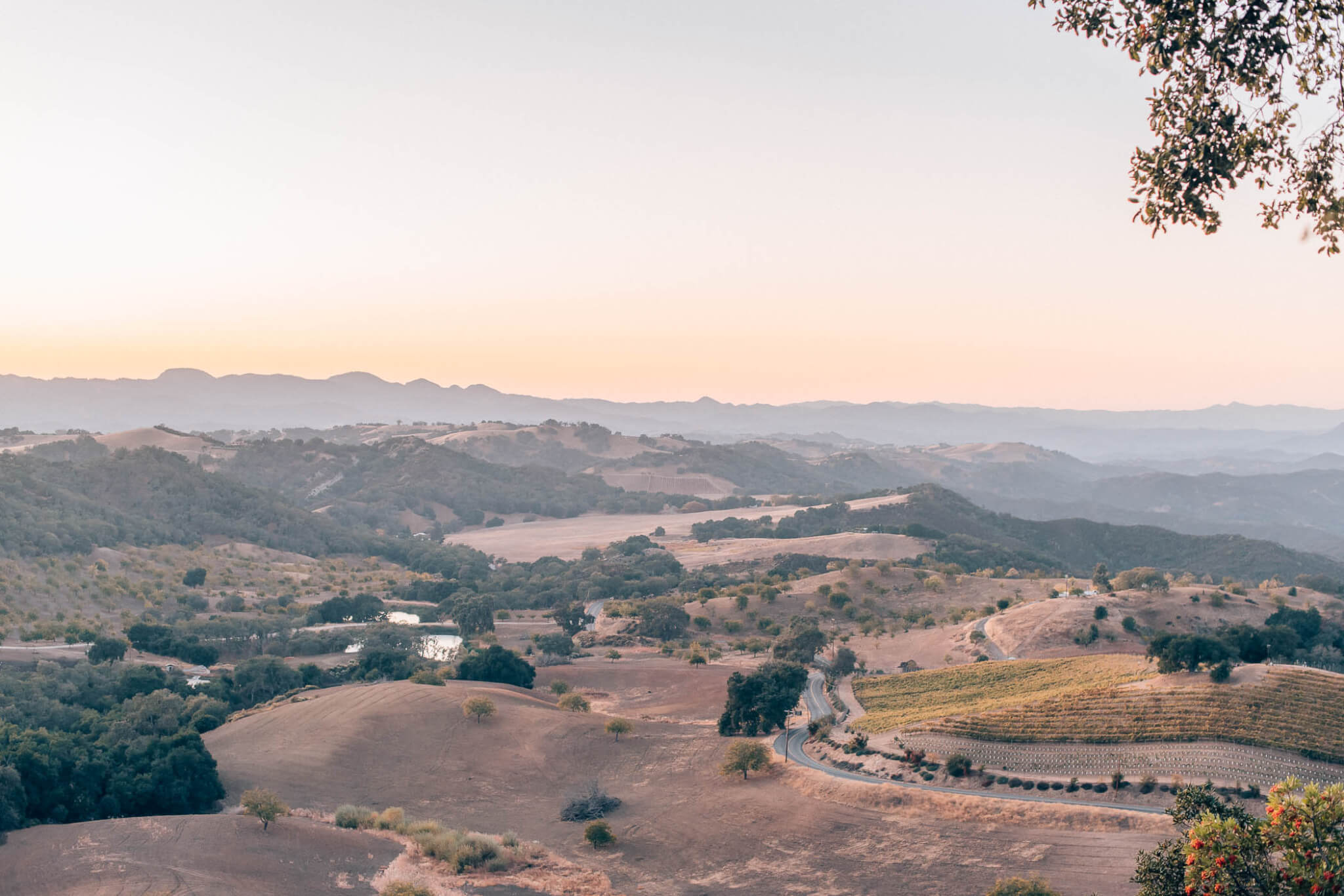 Things to Do in Paso Robles: Paso Travel Guide