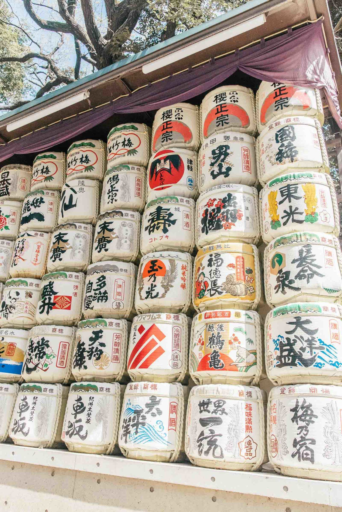 10 day Japan itinerary, by travel blogger What The Fab