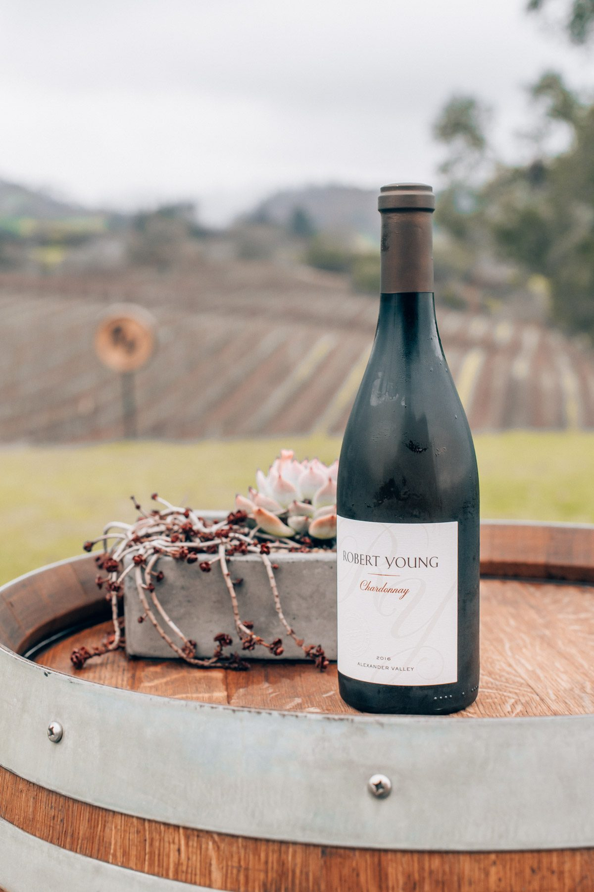 The best wineries in Healdsburg, by travel blogger What The Fab