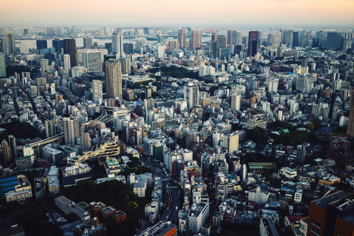 Everything you need on your Tokyo itinerary, by travel blogger What The Fab
