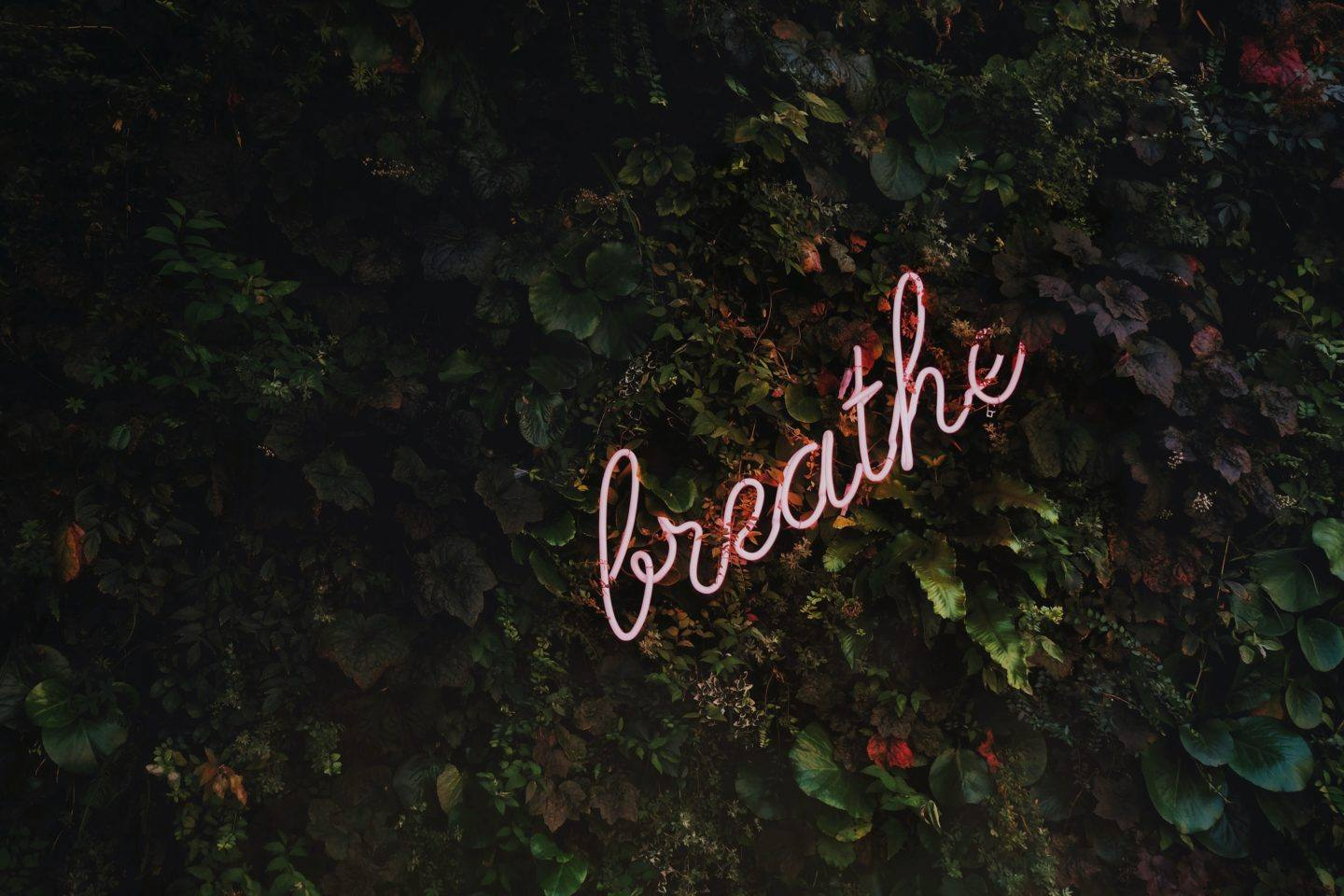 Prioritize yourself: self-care during self-quarantine, by lifestyle blogger What The Fab