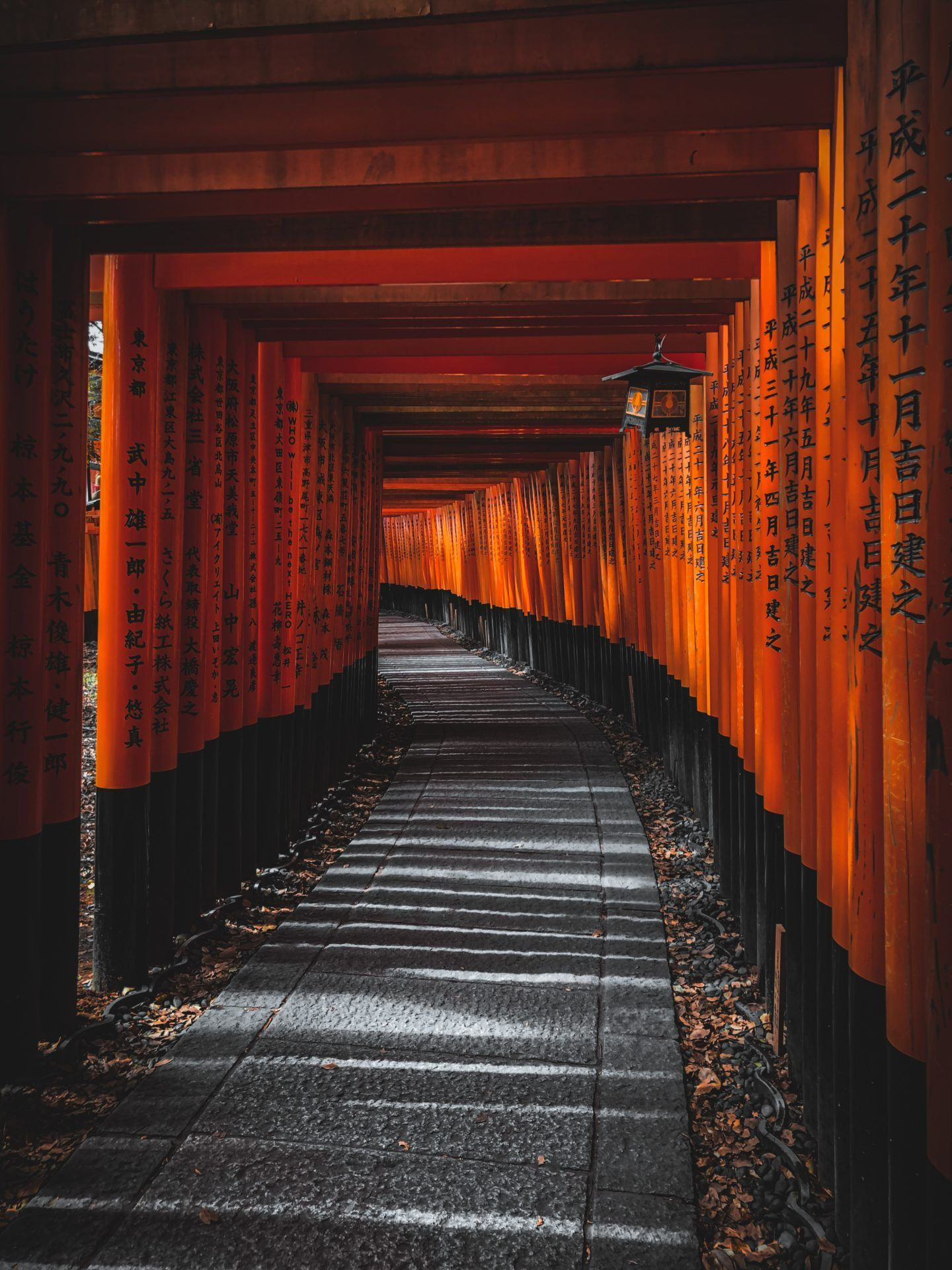 1 day Kyoto Itinerary, by travel blogger What The Fab