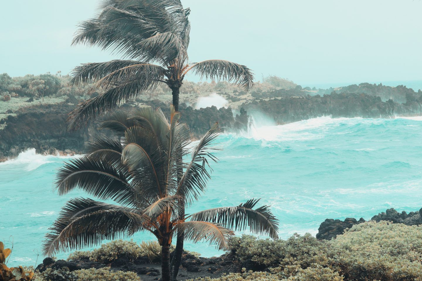Maui Attractions, by Travel Blogger What The Fab