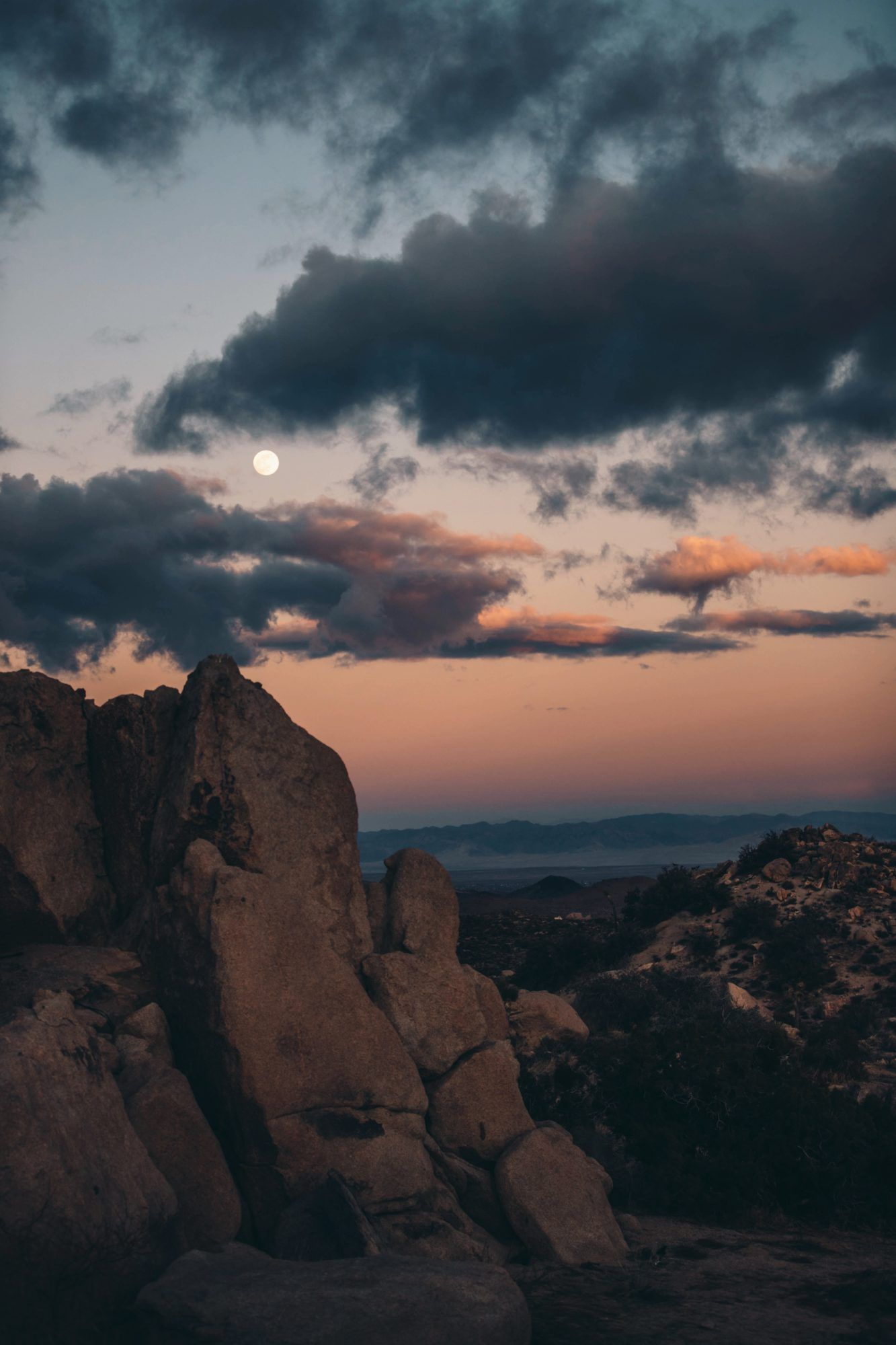 Joshua Tree Airbnbs, by Travel Blogger What The Fab