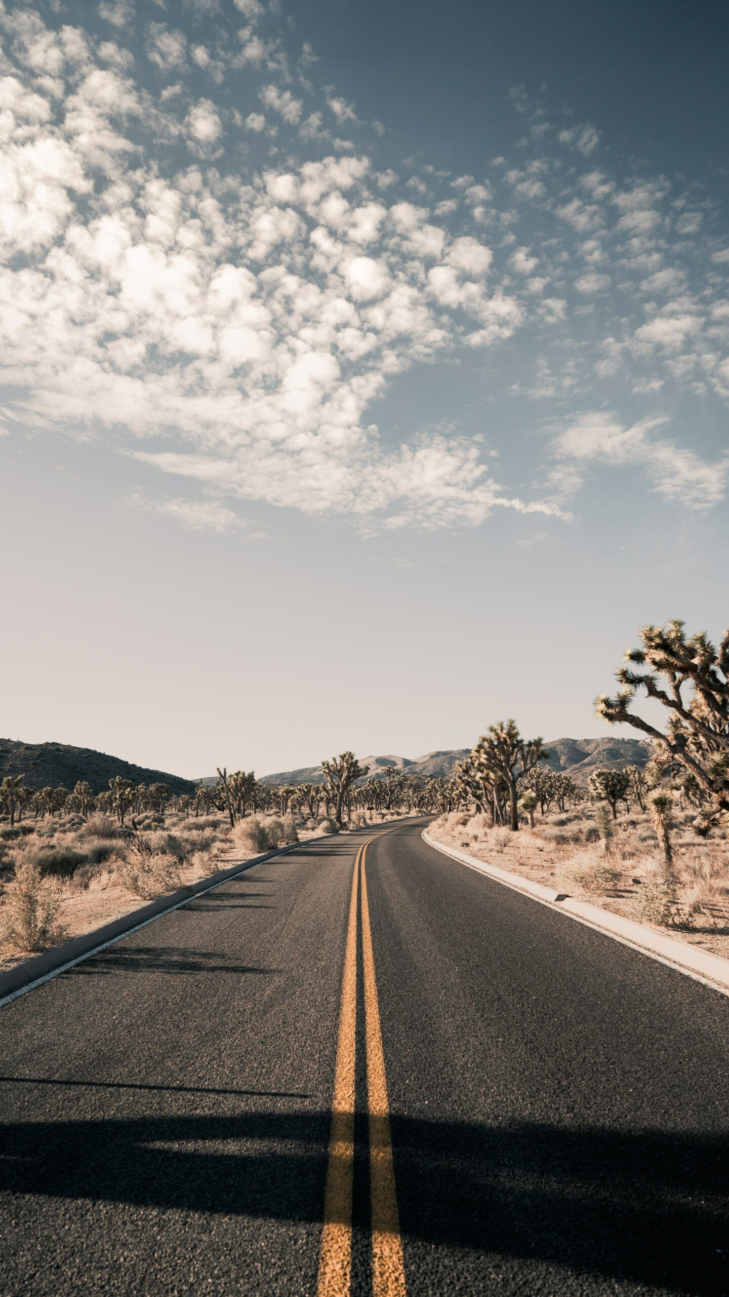 The Best places to travel to in the summer in the US, by Travel Blogger What The Fab