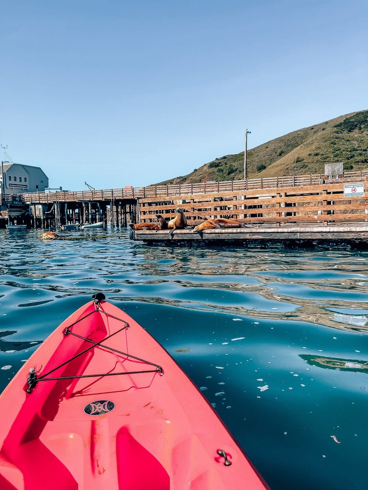What to Do in San Luis Obispo, by Travel Blogger What The Fab