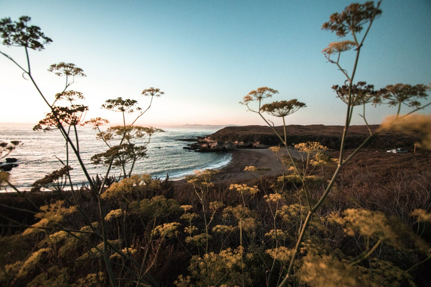 beaches in san luis obispo, by travel blogger what the fab